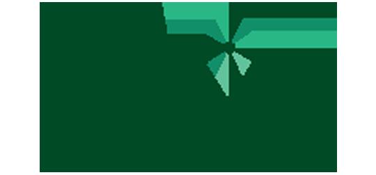 לוגו חברת טליה